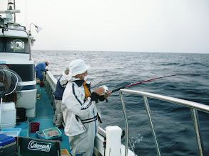 """Photo: 今年も、沖縄から来て頂きました! 沖縄にはいないらしい""""真鯛""""を釣りに!"""
