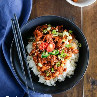 Pork And Rice Bowl Recipes