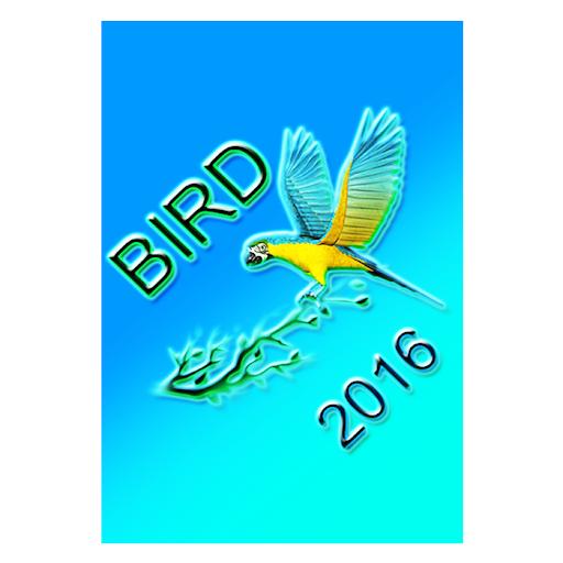 鳥着メロ2016