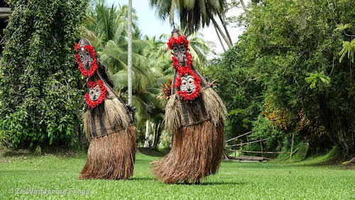 Papua. New Guinea East Sepik River Clans Crocodile Traditions. Kanganamun -Dance Tambaran Masks