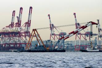 Photo: 起重機船とキリンの群れ。 う〜ん、贅沢な眺め。  #yokohama  #pentaxusersjp