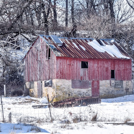 Old Red by Jason Lockhart - Buildings & Architecture Decaying & Abandoned ( wisconsin, winter, new glarus, snow, old barn )