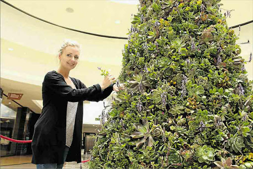 Wedding florist Sarah May Law's botanical Christmas tree at Vincent Park mall is made up of close to 1 000 succulents and indigenous plants Picture: SISIPHO ZAMXAKA