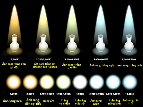 Cách-chọn-bóng-đèn-led-Philips-tiết-kiệm-điện-1.jpg