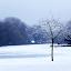 by Stephen McKibbin - Landscapes Weather