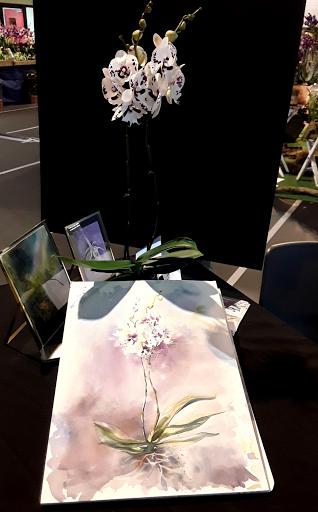 biennale de l'orchidée_ Pringy 2019_ AQUARELLES JEANNE PAPA _1