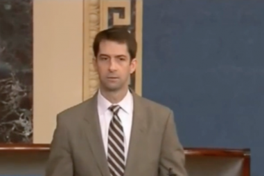 Sen. Cotton mum about Russian effort to oust national security adviser McMaster
