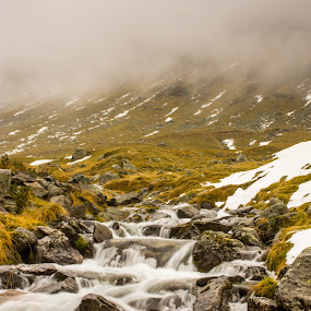 Follow the flow! by Nistorescu Alexandru - Landscapes Mountains & Hills ( #cold, #snowy, #grass, #mountains, #water )