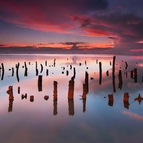sea spikes by Rodrigo Layug - Landscapes Waterscapes ( nature, waterscape, sunrise, landscape )
