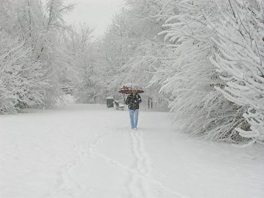 sotto una fitta nevicata di angelo27