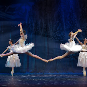 Nutcracker 5 by Don Chamblee - News & Events Entertainment
