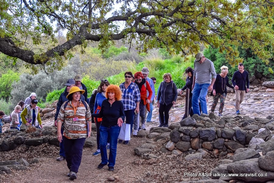 Пешеходный маршрут в заповеднике Тель Дан. Экскурсия в Израиле с гидом Светланой Фиалковой.