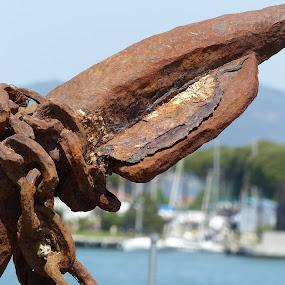 Old rusty anchor by Francesco Altamura - Artistic Objects Still Life ( marine, ancient, chain, still life, artistic object, rusty, rust, anchor )