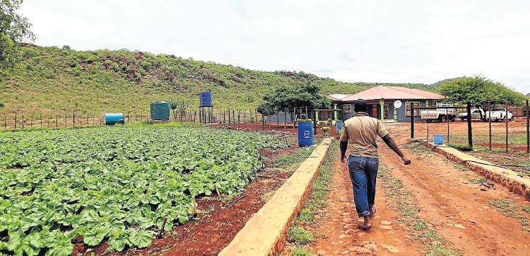 A smallholding in Makhado, Limpopo, that belongs to Humbulani Tshifhango, whose school has acted as a conduit for lottery beneficiaries.