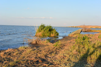 Photo: озеро Сасыколь