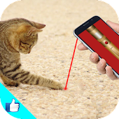 Cat Laser Games Pointer Joke