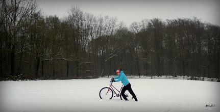 Photo: odevzdanost - přímo na hranici Flander a Valonska