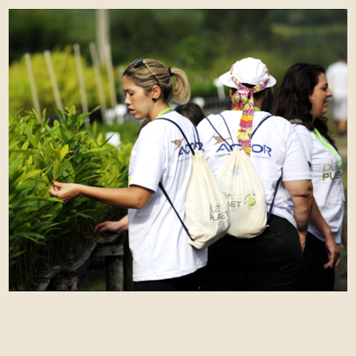 Plant for the Planet - Accor