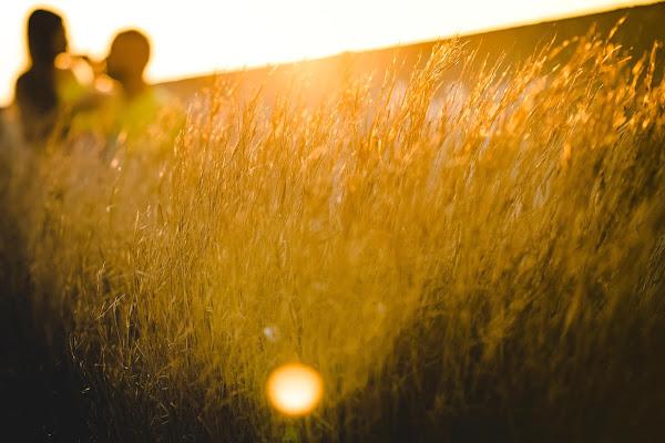 campo di grano di AdrianoPerelli