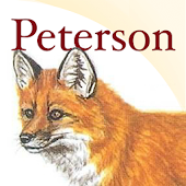 Peterson Mammals North America