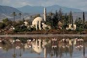Мечеть и фламинго