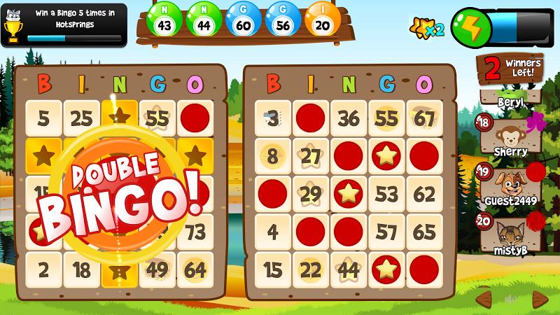 Free Bingo Games No Download No Registration