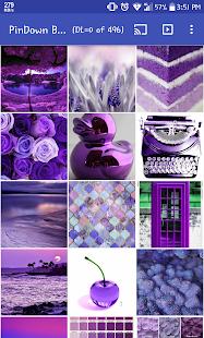 PinDown Bulk (Downloader/Slideshow of Pinterest)
