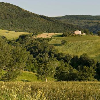Villa Luca_4