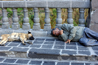 Photo: We come out of the museum and my dad decides to lie down with the dog, and requests a picture! He's nuts. I just wish I had thought of it first!
