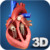 Tải Heart Anatomy Pro. APK
