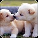 babydogs icon