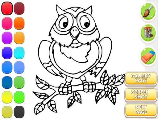 貓頭鷹的圖畫書