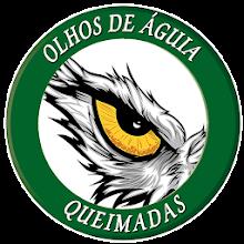 Olhos de Águia - Queimadas - SIPAM Download on Windows