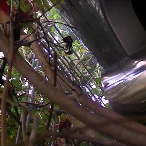 スカイライン R33 GTS25t type-Mのカスタム事例画像 SZTMさんの2019年12月05日20:55の投稿