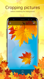 Autumn Backgrounds & Wallpapers - náhled
