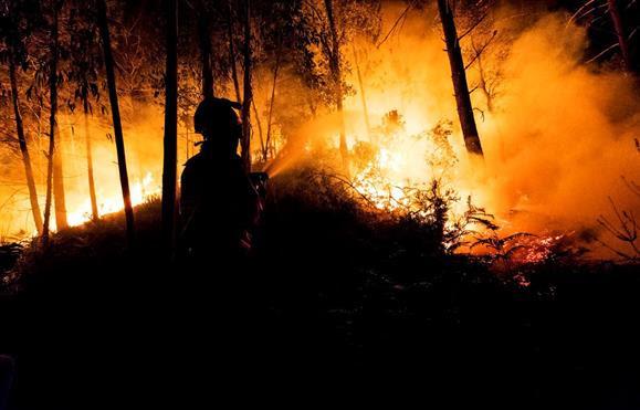 PJ detém mulher por suspeita de atear fogo florestal em Lamego