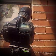 Photo: Macro con Nikon D7100 & Tamron SP 90mm F/2.8 Di VC USD 1:1