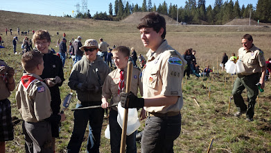 Photo: Photos from tree planting