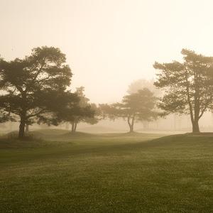 Nice day for Golfing.jpg