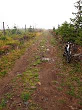 Photo: Czerwony szlak jest bardzo przyjemny, łagodnie nachylona szeroka szutrówka do szczytu Żmijowca w górę, później w dół.