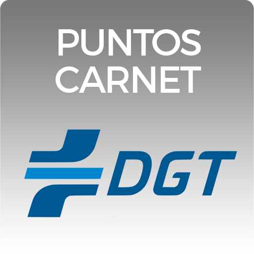 Consulta puntos DGT