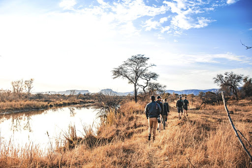 The Marataba Conservation Camps offer guests the opportunity to explore the bush on foot.