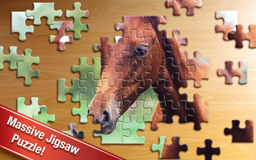 Jigsaw Puzzle 3.81.001 screenshots 11