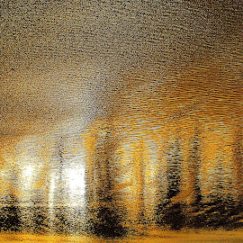 forest reflected by Gaylord Mink - Abstract Patterns ( reflection, waves, sunset, trees )