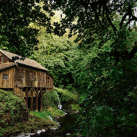 The Old Grist Mill by John Poyner - Buildings & Architecture Public & Historical ( water, old, building, wood, grist mill, historical )