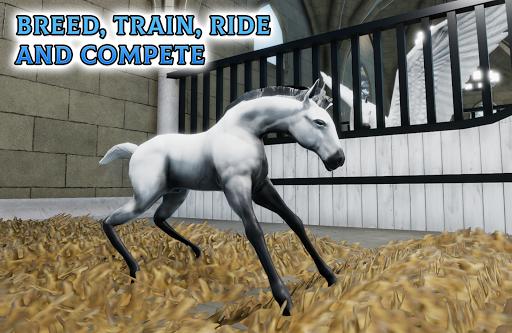 Horse Academy 3.47 screenshots 21
