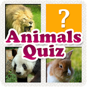 Animals Quiz & Infos