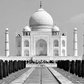 Wah, Taj! by Praveen Kulshreshtha - Black & White Buildings & Architecture (  )