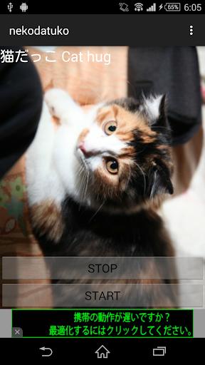 玩免費娛樂APP|下載猫鳴き声だっこおねだり app不用錢|硬是要APP
