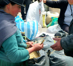 Photo: Money (US dollars) changing hands in Cañar market